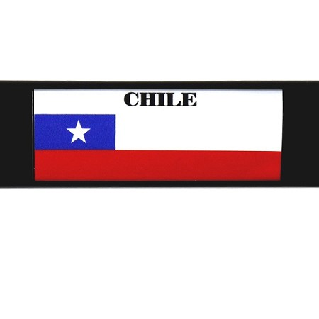 RE-USABLE SLIDE IN FLAG CHILE