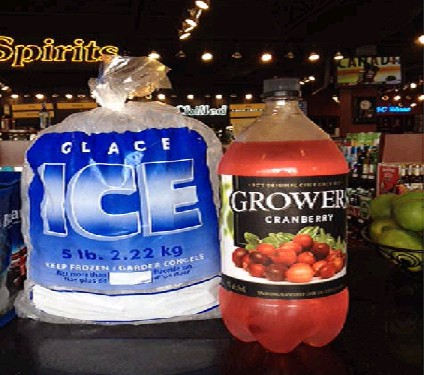5 LB ICE BAGS with Free Twist Ties 1000/case